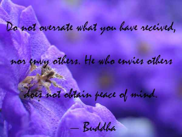 buddha quotes on peace and love
